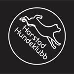 Harstad Hundeklubb – dag 1