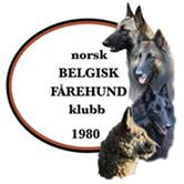 Norsk Belgisk Fårehund Klubb